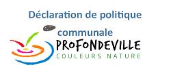 Déclaration de politique communale et déclaration individuelle d'apparentement